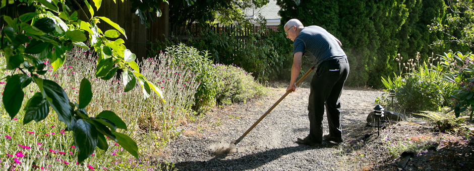 raking the yard